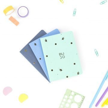 Pack Pocket Journal Snowy Colors